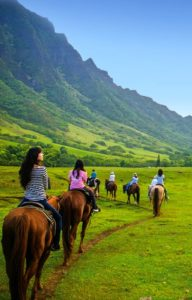 Kualoa Ranch Private Tour