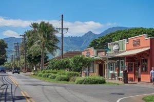 Haleiwa Town Tour