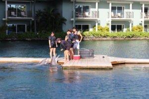 Kahala Resort Tour