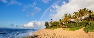 Sunset Beach Oahu Tour