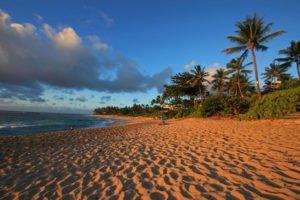 Tour Sunset Beach Oahu