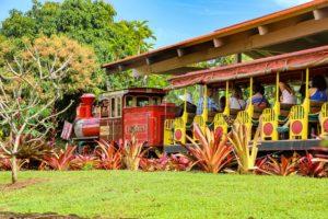 About Dole Plantation Train Ride