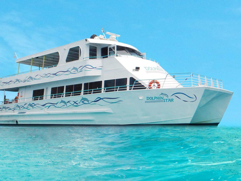 Paradise Waikiki Cruise