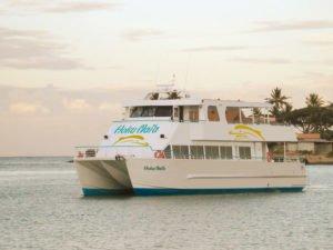 Waikiki Cruise